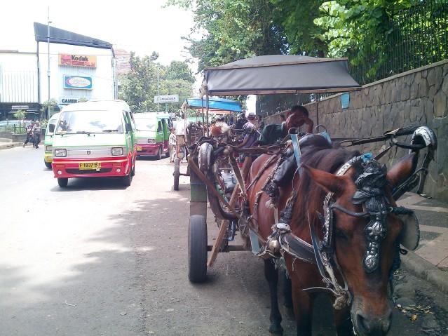 """""""...Jalur Lalulintas  Jalan Raya Kota Bogor..."""" Photo By : Red NRMnews"""